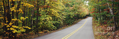 Country Road Through Maine Forest Print by Jeremy Woodhouse