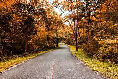 Countryside Road In Autumn Print by Mongkol Chakritthakool
