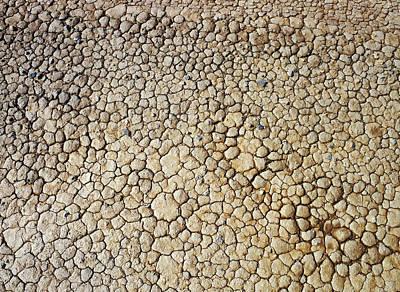 Tessellation Photograph - Cracked Mud by Detlev Van Ravenswaay