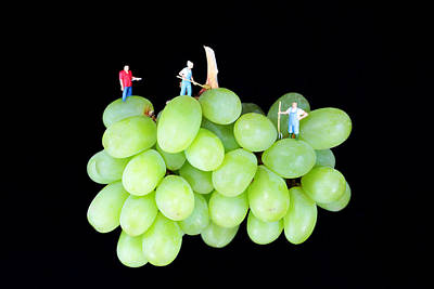 Cultivation On Grapes Print by Paul Ge
