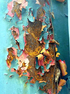 Rusty Photograph - Curled Peeling Paint by Carla Parris