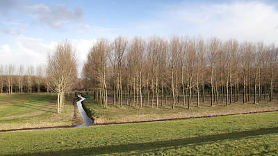 Flevoland Photograph - Curved Ditch In The Netherlands by Anton Havelaar