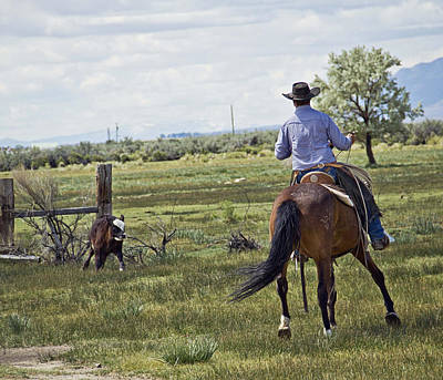 Cowboy Photograph - Cuttin Back by Megan Chambers