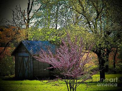 Daddys Old Shed In The Spring Print by Joyce Kimble Smith