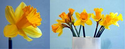 Daffodils Print by Cathie Tyler