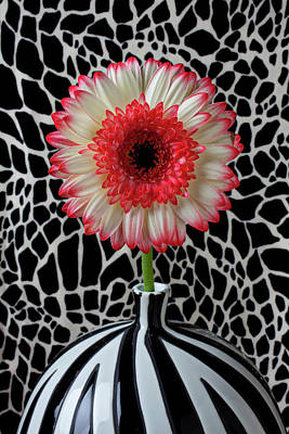 Daisy And Graphic Vase Print by Garry Gay