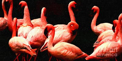 Dancing Flamingos Print by Wingsdomain Art and Photography