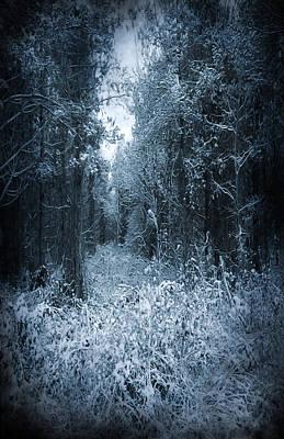 Dark Place Print by Svetlana Sewell