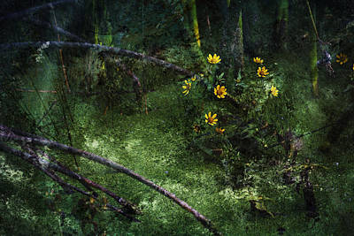 Deep Into Nature Print by Bonnie Bruno