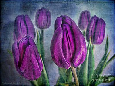 Tulips Digital Art - Deep Purple by Lianne Schneider