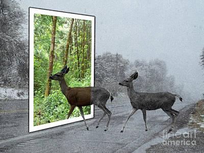 Deer Crossing Print by Methune Hively