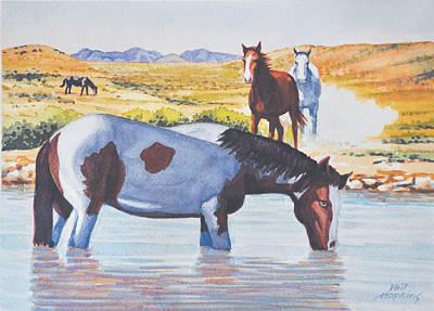 Phil Hopkins Painting - Desert Mustangs by Phil Hopkins