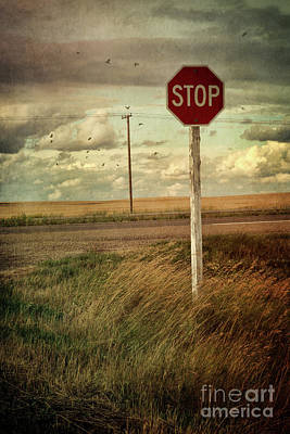 Deserted Red Stop Sign On The Prairies Print by Sandra Cunningham