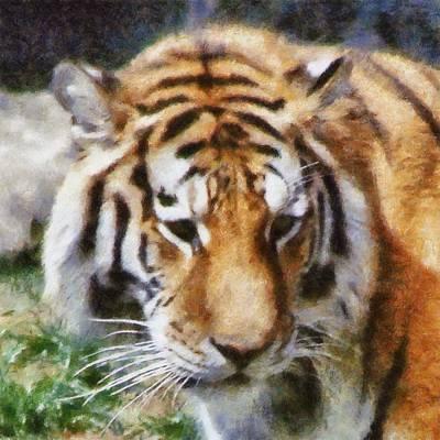Detroit Tigers Digital Art - Detroit Tiger by Michelle Calkins