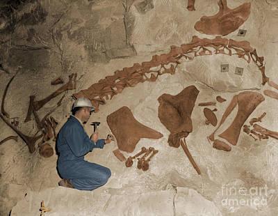 Dinosaur National Monument Print by Harold Brodrick/Science Source