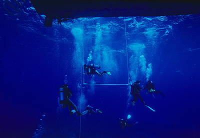 Divers Decompressing Beneath A Boat Print by Alexis Rosenfeld