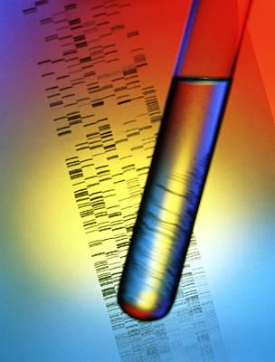 Dna Fingerprint And A Test-tube Print by Tek Image