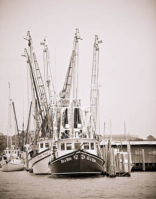 Docked Print by Donni Mac