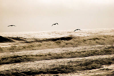 Dodging The Waves Print by Trish Tritz