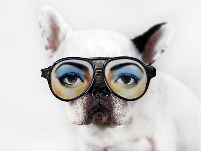 Dog Wear Glasses Print by Retales Botijero