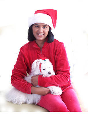 Doggie Christmas Print by Vijay Sharon Govender