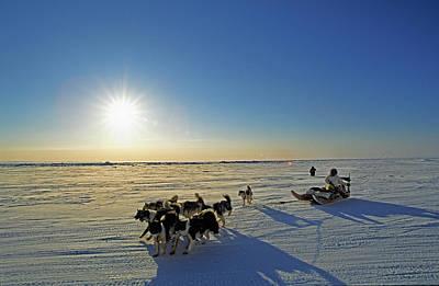 Dogsledding In Grise Fiord, Nunavut Print by Robert Postma