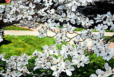 Dogwood Blooms In A Virginia Church Yard Print by Thomas Akers