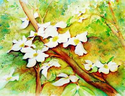 Dogwood Flowers Print by Carla Parris