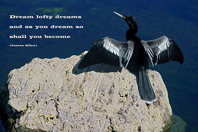 Aninga Photograph - Dream Lofty Dreams by Sally Weigand