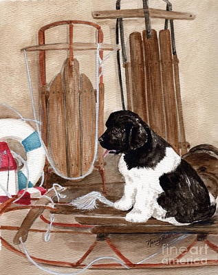Newfoundland Puppy Painting - Dreaming Of Winter  by Nancy Patterson