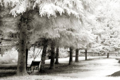 Dreamy Surreal Infrared Park Bench Landscape Print by Kathy Fornal