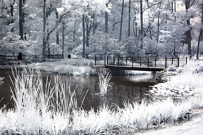 Dreamy Surreal South Carolina Pond Landscape Print by Kathy Fornal