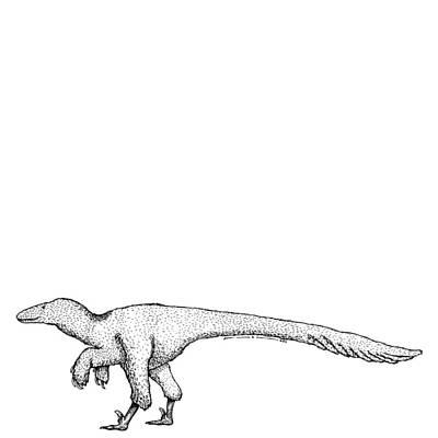Dromaeosauroides - Dinosaur Print by Karl Addison