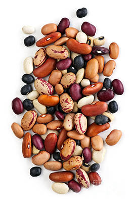 White Background Photograph - Dry Beans by Elena Elisseeva