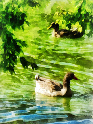 Gliding Photograph - Ducks On A Tranquil Pond by Susan Savad