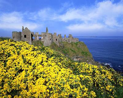 Dunluce Castle, Co. Antrim, Ireland Print by The Irish Image Collection