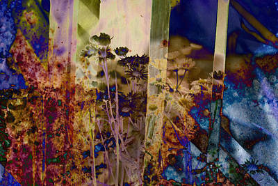 Abstract Photograph - Dusky Wildflowers by Robert Glover