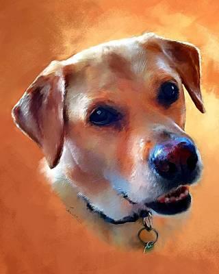 Dusty Labrador Dog Print by Robert Smith