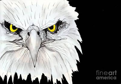 Shashi Kumar Painting - Eagle by Shashi Kumar