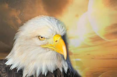 Eagle Sun Print by Marty Koch