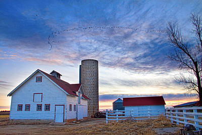 Geese Photograph - Early Morning On The Farm by James BO  Insogna