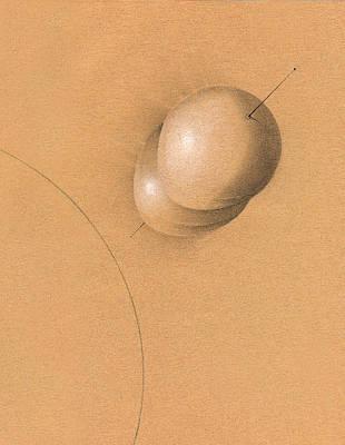 Earth Log I Print by Albert Notarbartolo