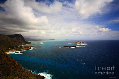 East Oahu Coastline Print by Cheryl Young