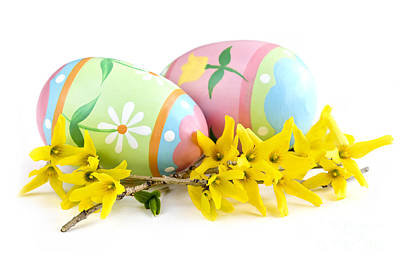 White Background Photograph - Easter Eggs by Elena Elisseeva