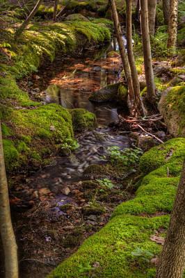 Eastern Creek Original by Steve Gadomski