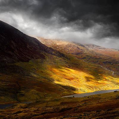 Iandavidsoar Pyrography - Eden by Ian David Soar