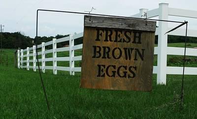 Photograph - Eggs For Sale by Anna Villarreal Garbis