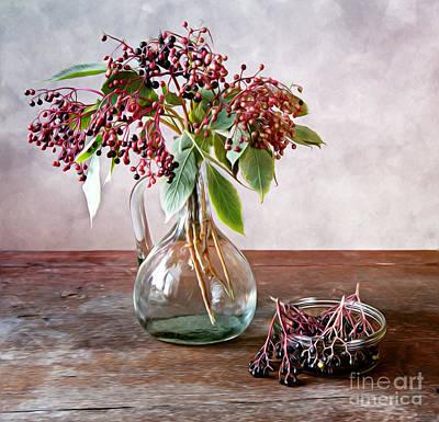 Shiny Leaves Photograph - Elderberries 01 by Nailia Schwarz