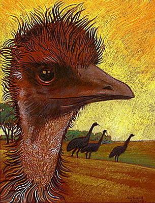 Emu Drawing - Emu As A Redhead by Richard Rogers