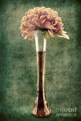 Estillo Vase - S02et01 Print by Variance Collections